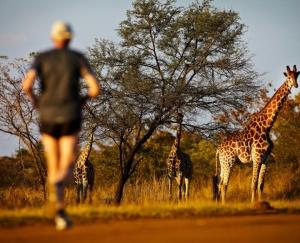 SouthAfrica_BigFiveMarathon_RunnerAndGiraffe_045